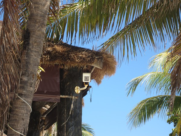 Akumal Beach Webcam