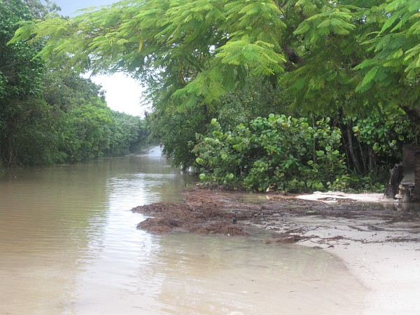 Flooded beach road