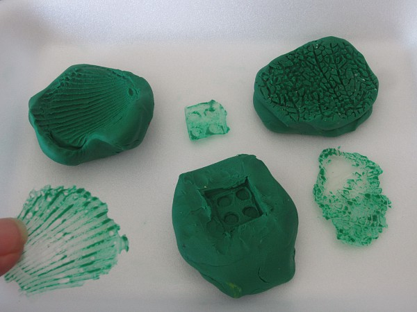 Homemade fossils with clay and glue